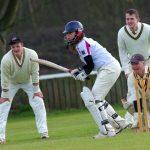 cricket-724615_1920.jpg